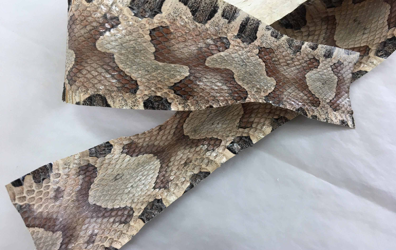 snakeskin hide